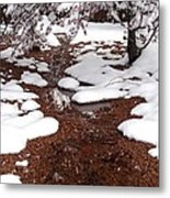 Spring Into Winter Metal Print