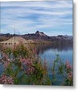Spring Lake Mohave Metal Print