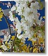 Spring Life In Still-life Metal Print