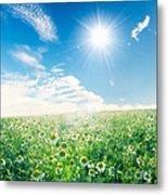 Spring Meadow Under Sunny Blue Sky Metal Print
