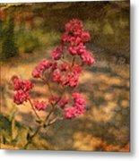 Spring Mignonette Flower Metal Print
