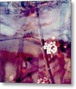 Spring-mirror Metal Print by Dorothy Rafferty
