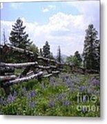 Spring Mountain Lupines 2 Metal Print