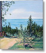 Spring Olive Grove And Pathway To The Sea Metal Print
