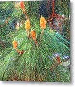 Spring Pine Metal Print