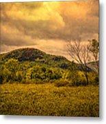 Spring Rain - White Mountains -maine Metal Print