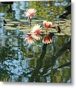 Spring Reflections Metal Print