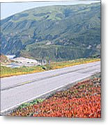 Spring, Route 1, California Coast Metal Print