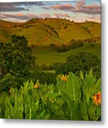 Spring Scene At Round Valley Metal Print