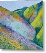 Valley Of Flowers Metal Print