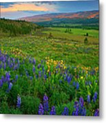 Spring Storm Passing Metal Print by Mike  Dawson
