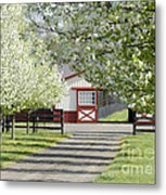 Spring Time At The Farm Metal Print