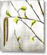 Spring Tree Branch Metal Print