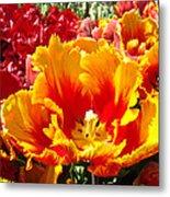 Spring Tulip Flowers Art Prints Yellow Red Tulip Metal Print