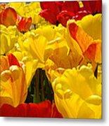 Spring Tulips Art Prints Yellow Red Tulip Flowers Metal Print