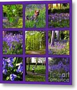 Spring Woodland Picture Window Metal Print