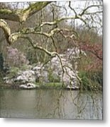 Springtime At The Pond Metal Print