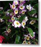 Springtime Flowers At Biltmore Estate Metal Print