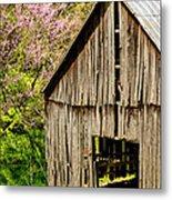 Springtime In Kentucky Metal Print
