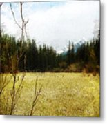 Springtime In The Mountains Metal Print