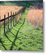 Springtime Pasture Metal Print