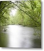 Springtime River Metal Print