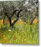 Springtime Sicily Metal Print