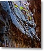 Sprout On Blue Walls Metal Print