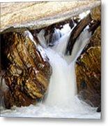 Spun Silk - Sequoia National Park Metal Print
