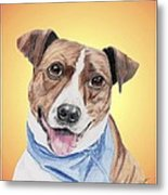 Spunky Former Shelter Sweetie Metal Print