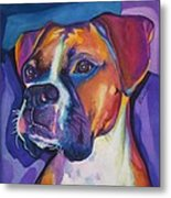 Square Boxer Portrait Metal Print by Robyn Saunders
