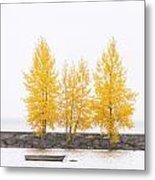 Square Diptych Tree 12-7693 Set 1 Of 2 Metal Print