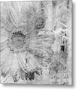 Square Series - Black White 5 Metal Print