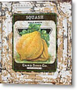 Squash On Vintage Tin Metal Print