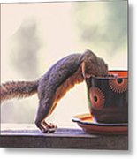 Squirrel And Coffee Metal Print
