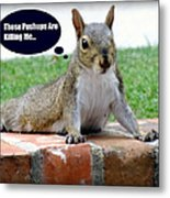 Squirrely Push Ups Metal Print