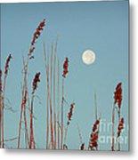 St. Augustine Beach Moonrise Metal Print