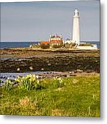 St Marys Lighthouse With Daffodils Metal Print