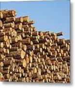 Stacks Of Logs Metal Print