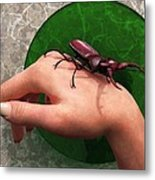 Stag Beetle On Hand Metal Print by Daniel Eskridge