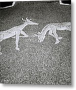 Stags Metal Print