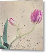 Stained Tulip Metal Print by Cristina-Velina Ion