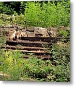 Staircase In The Forest Metal Print