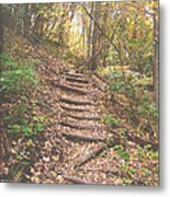 Stairs Into The Forest Metal Print