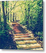 Stairway Into The Forest Metal Print