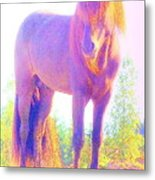 The Stallion Came To Me In A Dream Metal Print