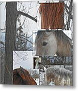 Stallions Collage There Is A Connection Metal Print