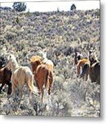 Stampede Of Wild Horses Metal Print