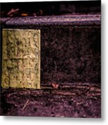 Stand Or Not Stand Metal Print by Bob Orsillo