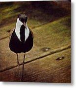Standing Bird Metal Print